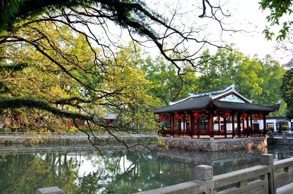 市中心别墅用地难再有,桂山院子占据价值新坐标