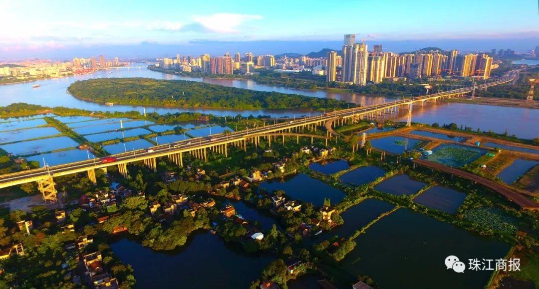 新建两座桥! 还有新体育中心、科学馆 大良、容桂将有大变化