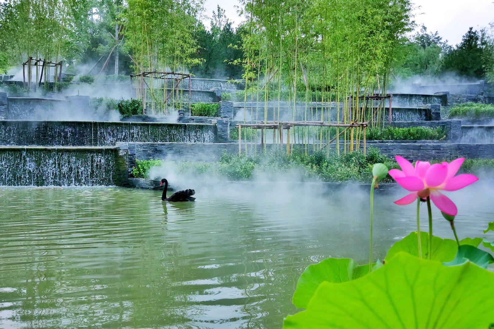 2020上海青浦区宝业爱多邦售楼处电话;售楼处位置;